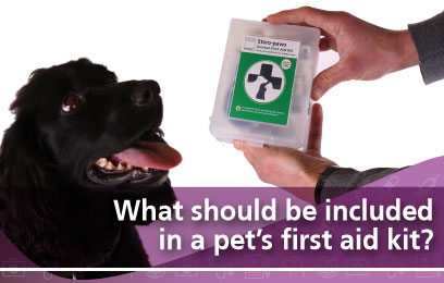 what-should-be-included-in-a-pets-first-aid-kit