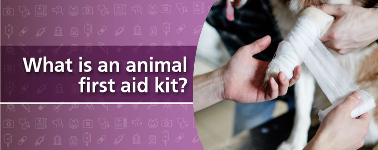 What is an animal first aid kit?